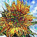 Barbara Chichester - Sunflower Fairyland