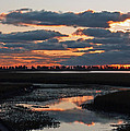 Inspired Nature Photography By Shelley Myke - Sunrise over Point Pelee...