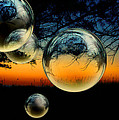 Kelly Rockett-Safford - Sunset and Bubbles