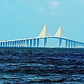 Cynthia Guinn - Sunshine Skyway Bridge