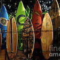 Bob Christopher - Surfboard Fence 4