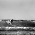 Michael Braham - Surfing In Sunny...
