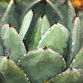 Terry Fleckney - Texas Agave