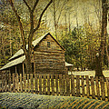 Randall Nyhof - The Carter Shields Cabin...