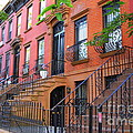 Dora Sofia Caputo - The Historic Brownstones...