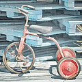 Steve Taylor - The Joy of Tricycles