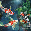Kathy Brecheisen - The Koi Pond