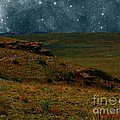 RC deWinter - The Night Stars Fell to...