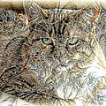 Kathleen Struckle - The Tapestry Cat