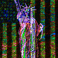 The United States Of America 20130115 by Wingsdomain Art and Photography