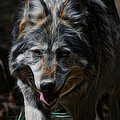 Ernie Echols - The Wolf Digital Art