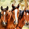 Angelgold Art - The Yearlings