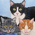 Jamie Frier - Three Kitties