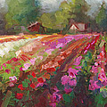 Talya Johnson - Trespassing Dahlia field...