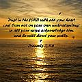 Trust In The Lord  by Barbara Snyder