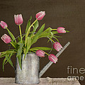 Tulip Bouquet  by Alana Ranney