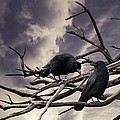 Linda Lees - Two Crows