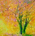 Demeter Gui - Two tree in autumn light