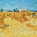 Tilen Hrovatic - Van Gogh - Harvest in...
