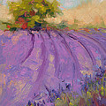 Talya Johnson - Wildrain Lavender Farm