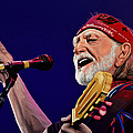 Paul  Meijering - Willie Nelson