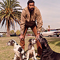 Wilt Chamberlain With Dogs by Retro Images Archive