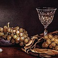 Hugo Bussen - Wine and grapes