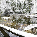 Winter Along Cranberry River by Thomas R Fletcher