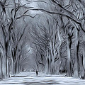 Nina Bradica - Winter in Central Park