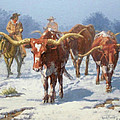 Randy Follis - Winter Longhorns
