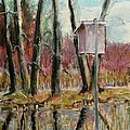 Tim  Swagerle - Wood Duck House