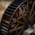 Paul Ward - Wooden Water Wheel