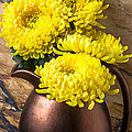 Yellow Mums In Copper Vase by Garry Gay