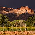 Robert Ford - Zion Peaks lit by...