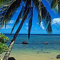 Kathy Yates - Beautiful Anini Beach