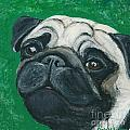 Ania M Milo - Bo The Pug