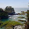 Stacey Lynn Payne - Cape Flattery Inlet...