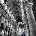 Chris Shirley - Cathedrale Notre-Dame de...