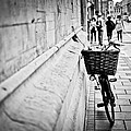 Shehan Fernando - Cycle in Cambridge