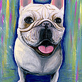 Ania M Milo - Dino The French Bulldog