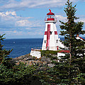 Jeanne  Woods - East Quoddy Head...