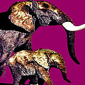 Philip Gresham - Elephants