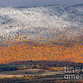 Francois Fournier - First Snow On Mount...