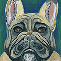 Ania M Milo - French Bulldog