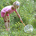 Girl Collects Insects In A Meadow by Ted Kinsman