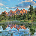 Dale Erickson - Grand Teton Reflection