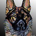 Ania M Milo - GSD Portrait on Silver