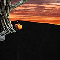 ChelsyLotze International Studio - Halloween Backdrop