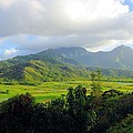 John  Greaves - Hanalei Valley View