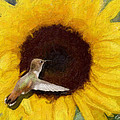 Diana Haronis - Hummingbird on Sunflower